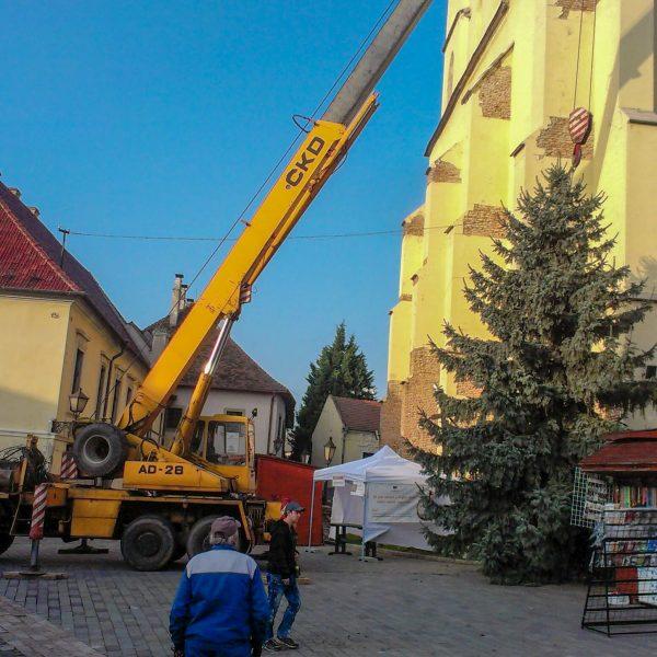 Príprava Vianočného stromčeku